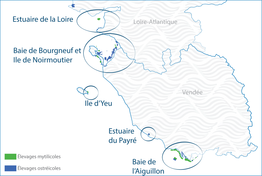 CARTE DES BASSINS DE PRODUCTION
